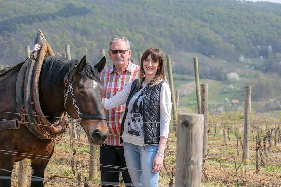 Krauthaker winery