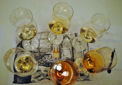 Kako se čitaju vina?