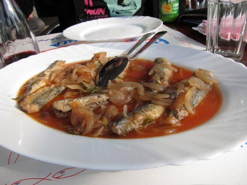 Fish Food More